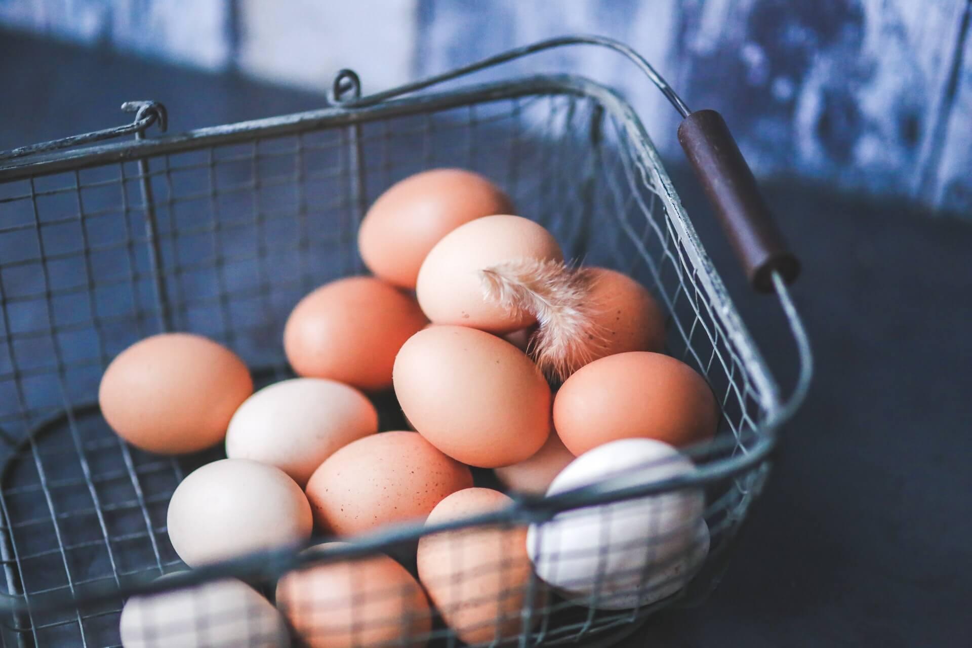 Ovo, conheça alguns benefícios